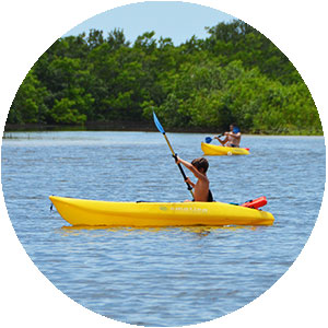 Rent single, double and quad kayaks on Marco Island at Tigertail Beach Rentals
