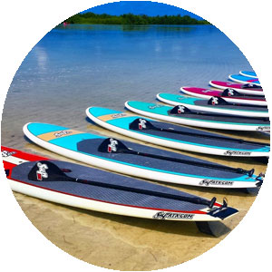 Marco Island Stand Up Paddleboard Rentals at Tigertail Beach
